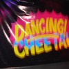 Dancing Cheetah returns in 2011, bringing World Music 2.0 to the Carioca Ear
